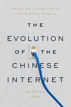 The Evolution of the Chinese Internet
